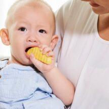 makanan bayi 6 bulan